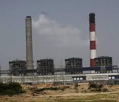 Tata plant, credit: Joe Athialy, BIC USA