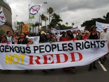 Indigenous peoples protest against REDD in Durban, 2011 (credit: Langelle. GJEP-GFC)