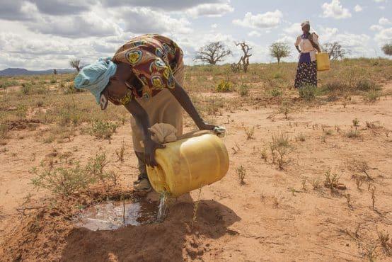 Women watering mukau sapplings in Kenya. Credit: Flore de Freneuf/World Bank