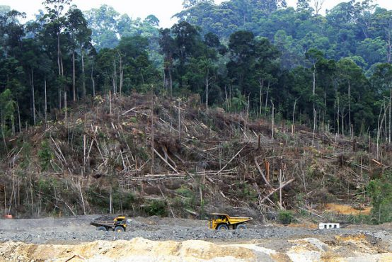 Clearing for a coal mine, Kalimantan forest, Borneo. Credit: Andrew Taylor/WDM