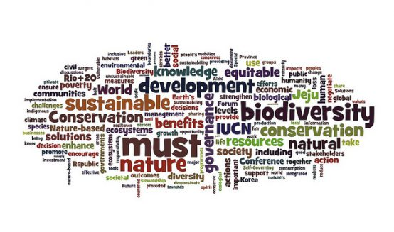 Wordled Jeju Declaration from the September 2012 #iucncongress. Credit:  Ron Mader