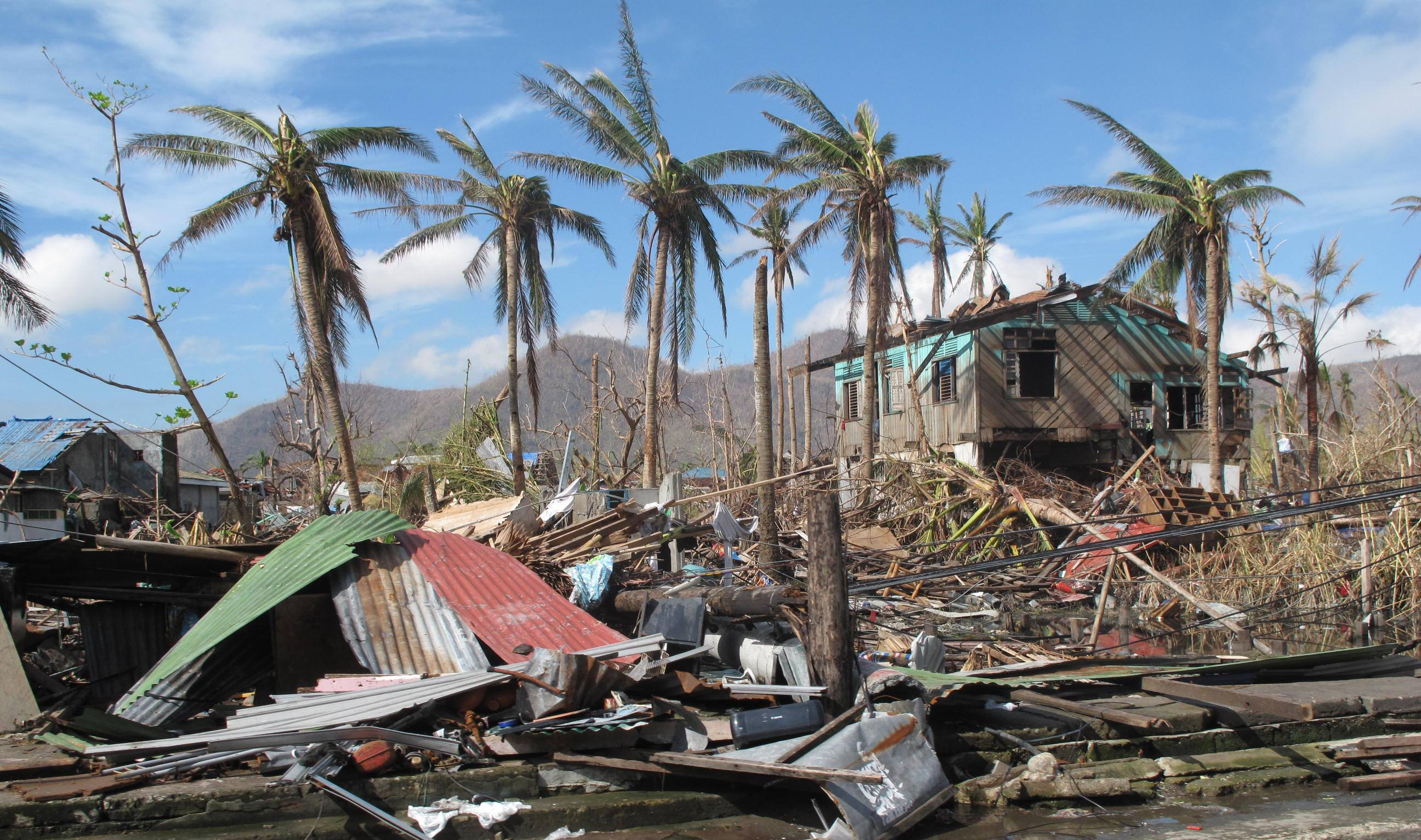 natural disasters in the philippines Natural disaster risk management in the philippines: enhancing poverty alleviation through disaster reduction the world bank national disaster coordinating council.